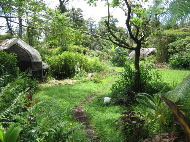 Permaculture archives eco evolution radio for Jardin permaculture